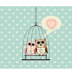 Couple Owl In Cage with Love vector image vector image