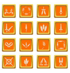 Ear corn icons set orange square vector