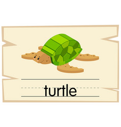 Flashcard for word turtle vector