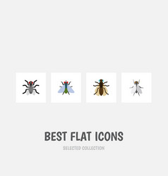 Flat icon fly set of hum fly mosquito and other vector