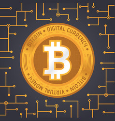 golden bitcoin coin vector image