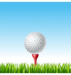Golf ball on a tee on a grass vector image