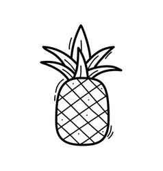 hand drawn doodle pineapple icon for backgrounds vector image