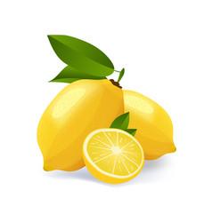 lemon cut emblem isolated on vector image