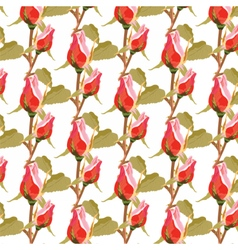 Roses floral pattern vector