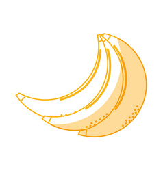 Silhouette delicious bananas healthy fruit vector