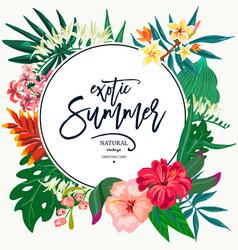 summer natural vintage exotic greeting card vector image