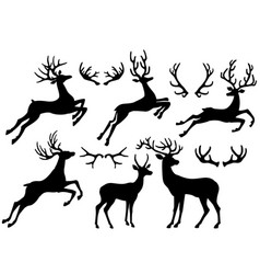 silhouettes of deers and deer horns vector image