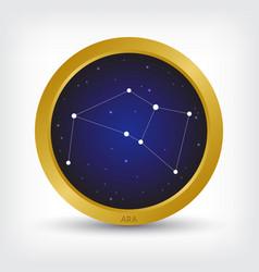 ara constellation in golden circle vector image vector image