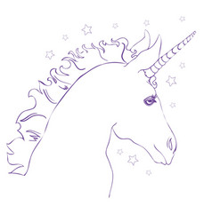 sketch unicorn hand drawn ink unicorn horse vector image