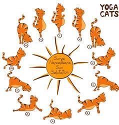 Cat doing yoga position of Surya Namaskara vector image