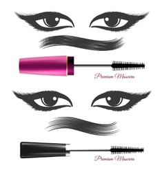 Demonstration mascara effects vector