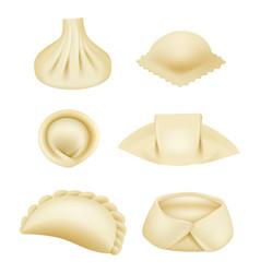 Dumplings realistic dough products pierogi asian vector
