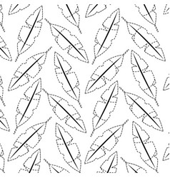 feathers tropical icon image vector image
