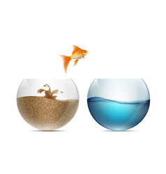 Gold fish jumping out of the aquarium aquariums vector