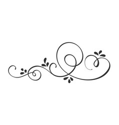 hand drawn calligraphic spring flourish vector image
