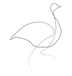 ostrich bird one line vector image