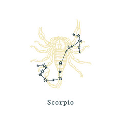 zodiacal constellation scorpion on background vector image