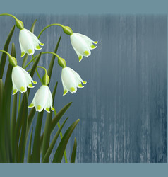 floral background spring flowers snowflakes vector image