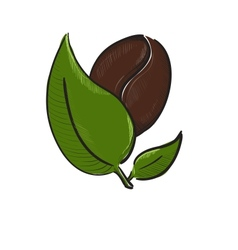Coffee bean with leaves isolated on white vector image vector image