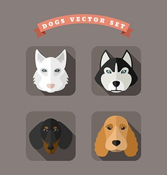 Animal Portrait With Flat Design Dogs vector image