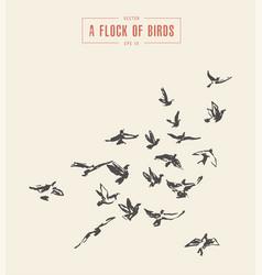 a flock birds drawn sketch vector image