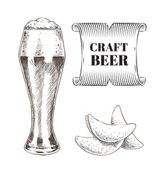 craft beer and fried chips set vector image