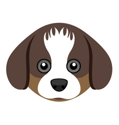Cute shih tzu dog avatar vector