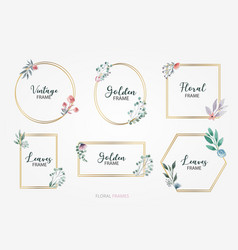 floral decorative frames set vector image