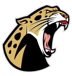 roaring leopard vector image