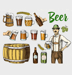 beer glass mug or bottle wooden barrels vector image