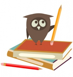 Books and owl vector