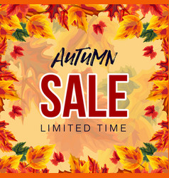 bright template of autumn sale advertisement vector image