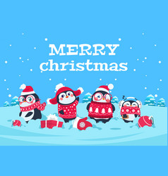 cute cartoon penguins christmas bapenguin vector image