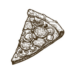 hand drawn slice of pizza food italian menu vector image