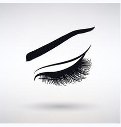 Icon female long eyelashes vector