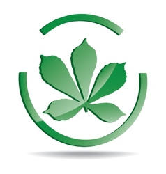 Logo with a picture a chestnut leaf vector