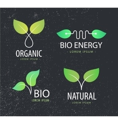 set of eco logos leaves organic vector image