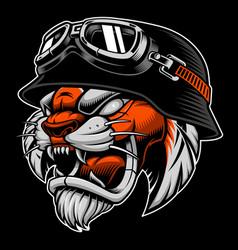 tiger with biker helmet vector image vector image