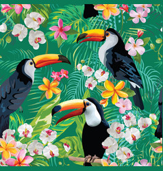 Tropical flowers and toucan birds background vector