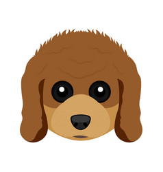 Cute poodle dog avatar vector