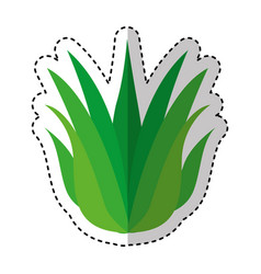 Grass nature isolated icon vector