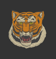 head of wild animal predator asian tiger face vector image