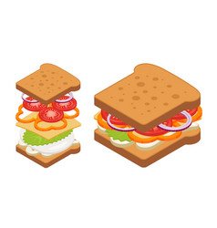 Isometric sandwich vector