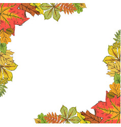 postcard with colorful autumn leaves frame of vector image