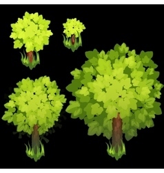 Trees of different sizes on a black background vector image