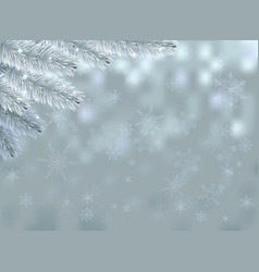Snow background with fir branch and sparkles vector image vector image