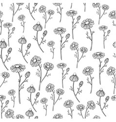 chamomile drawing seamless pattern vector image