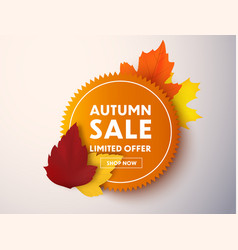 autumn sale price tag isolated vector image