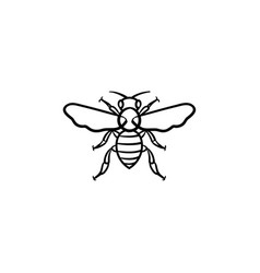 Bee hand drawn sketch icon vector
